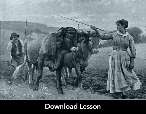 AP® World Lesson Plan: Gender, Women, and the Plow
