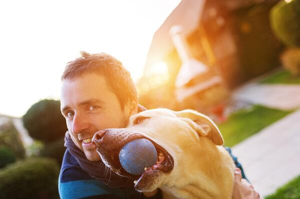 Pets and Social Media: 3 Powerful Campaign Concepts