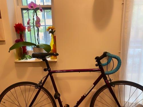 Shamari's Bike