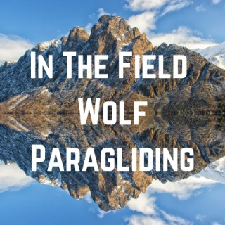 In The Field: Wolf Paragliding