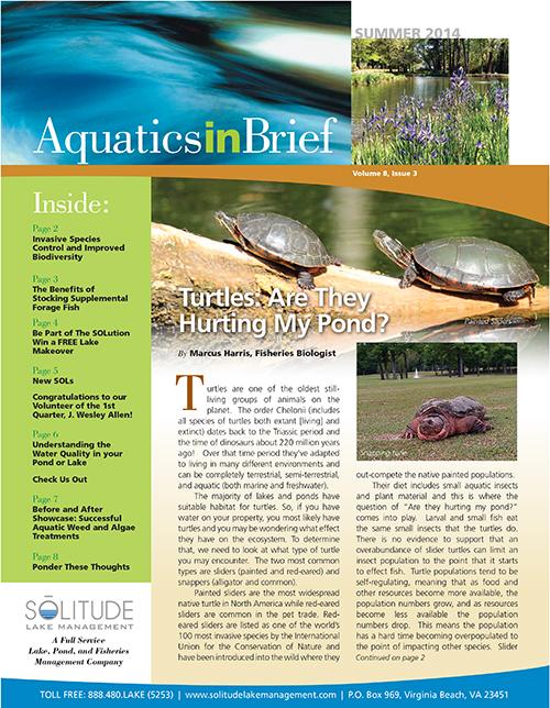 aquatics-in-brief-summer-2014