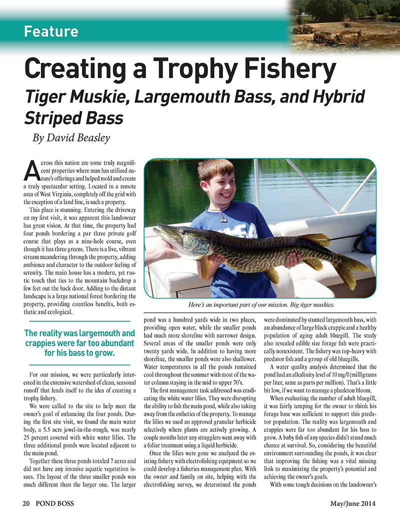 Creating_a_Trophy_Fishery_-_Pond_Boss_-_Dave_B_-_MayJune_2014_c