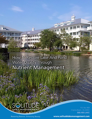 SOLitude_Restore_Water_Quality_Through_Nutrient_Management-1