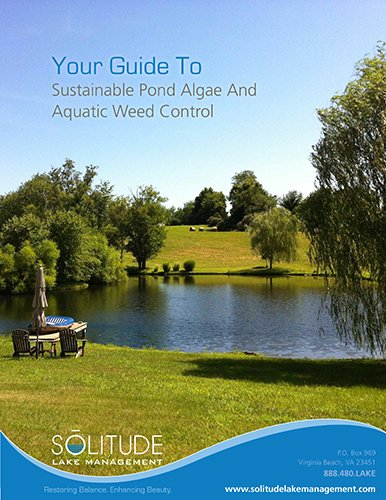 SOLitude_Guide_to_Sustainable_Pond_Algae_and_Aquatic_Weed_Control-1