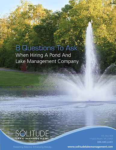 SOLitude_8_Questions_to_Ask_When_Hiring_a_Lake_Mgmt_Co-1-1