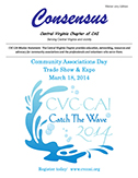Thin Ice - Consensus, Central Virginia Chapter, Community Associations Institute