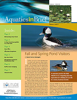 SOLitude Lake Fall 2012 Newsletter