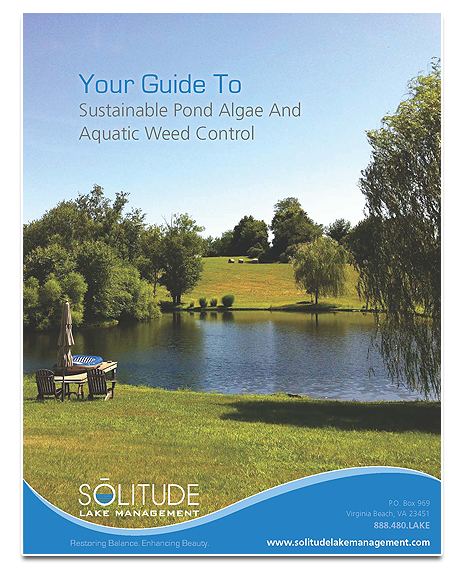 Guide-To-Sustainable-Pond-Algae-Aquatic-Weed-Control