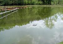 Sonic Lake And Pond Algae Control