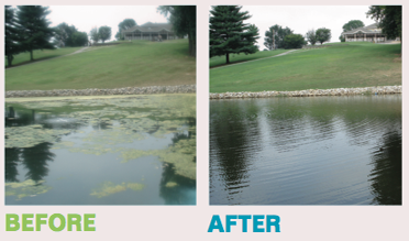 Sonic Pond Management Solutions