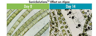 Ultrasonic Algae Control Solutions