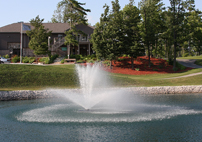 AquaMaster Masters Series Lake And Pond Fountains