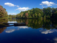 FallScenic_SprinkLakeWest_DullesVA_DaveR_10.14_c.jpeg