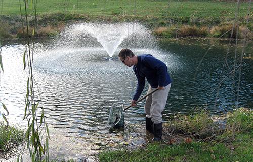 trout stocking aaron cushing