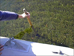 hydrilla clear water