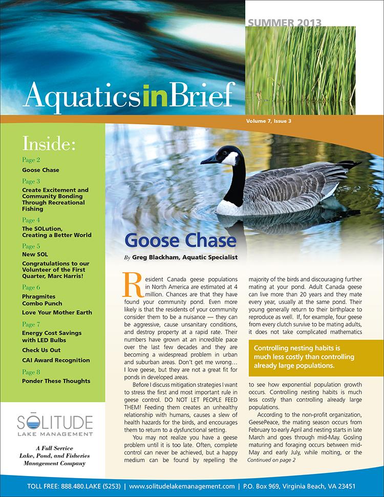 AquaticsInBrief Summer2013 cover