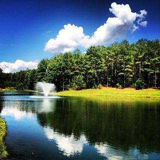 Good looking pond Kyle 06.12.13