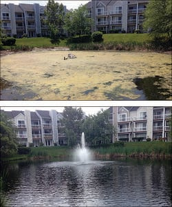 Aerate Your Pond and Shut the Muck Down!