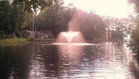 fountain pond managment