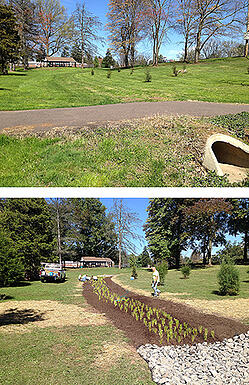 Kenilworth Park before after c