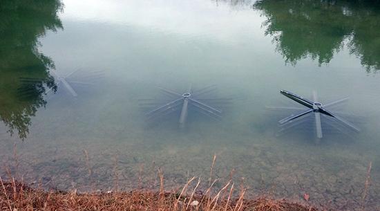 Fish habitat water filling up lake design