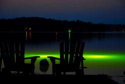 Catch fish at night with green monster fishing lights