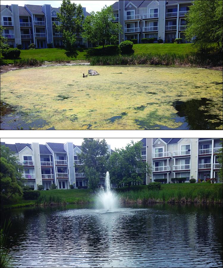 Lakeshore_Condos_Ashburn_VA_algae_before_Capt_XTR_.25_acres_Dav_R_2013