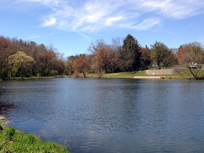 municipality_pond_lake_2