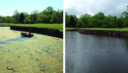 River_Run_CC_Davidson_NC_Pith_Algal_blooms_Before_After_Captain_XTR_Diquat_1_acre_Brad_2013_FB