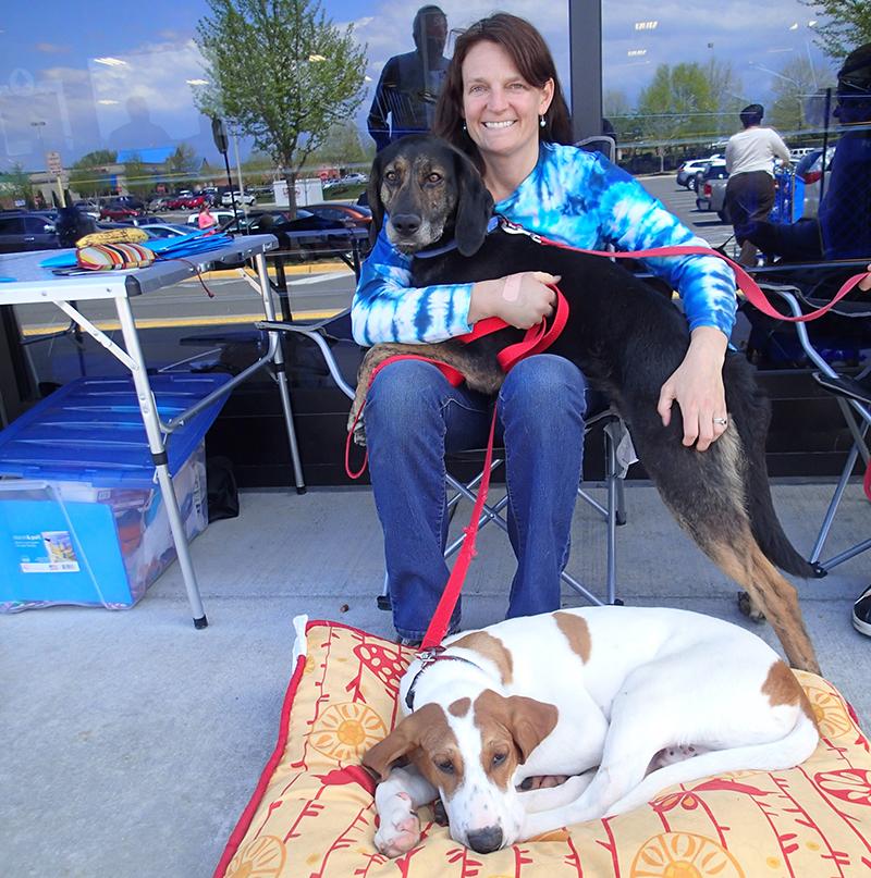 Madison County Animal Shelter Adoption Event