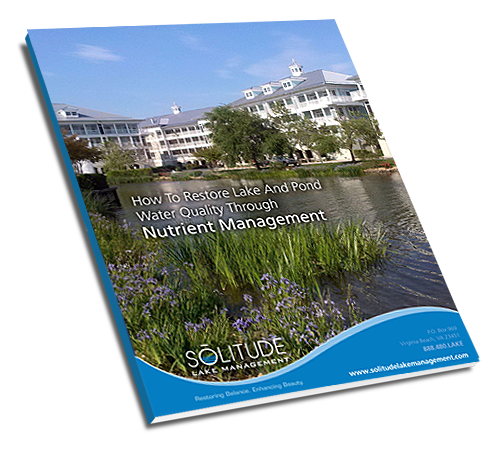 nro-restore-lake-and-pond-water-quality-cover