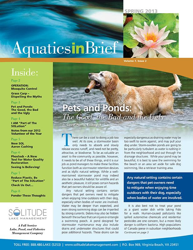 aquatics-in-brief-spring-2013