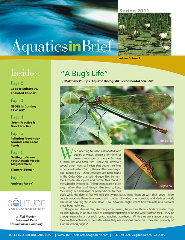 aquatics-in-brief-spring-2011