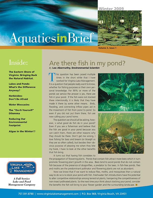 aquatics-in-brief-winter-2009