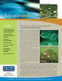 aquatics-in-brief-winter-2009