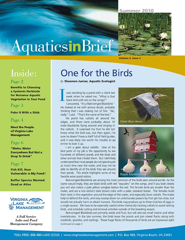 aquatics-in-brief-summer-2010