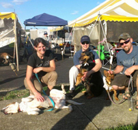 Dogapalooza Adoption Event