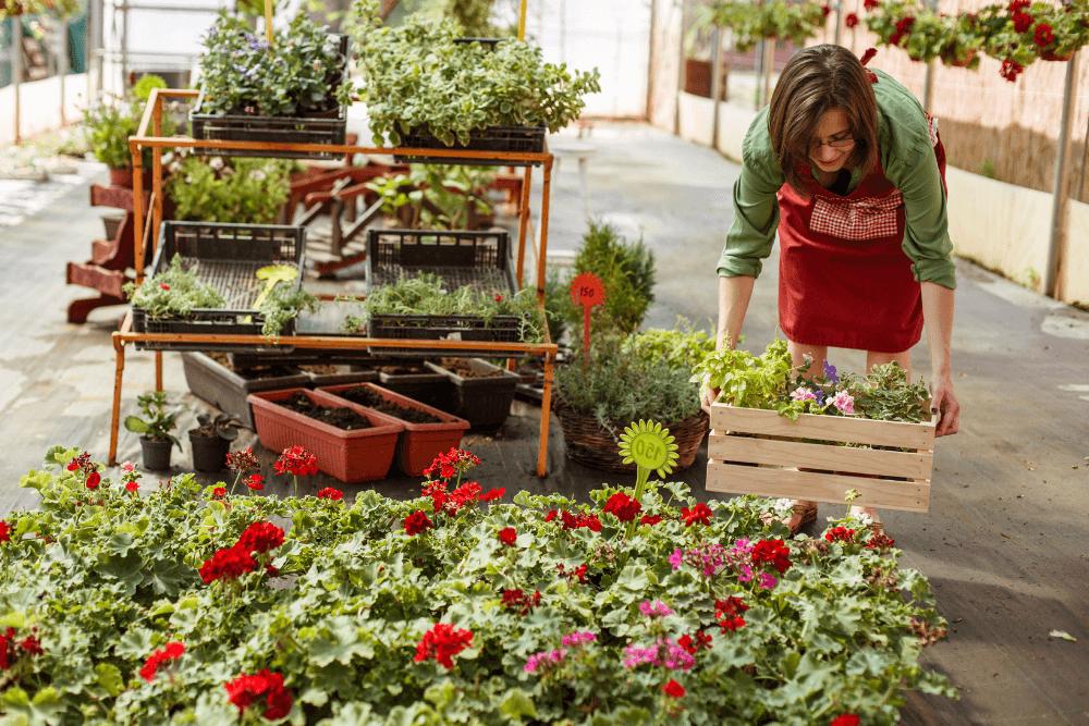 Seasonal Employee at Garden Center and ACA Compliance