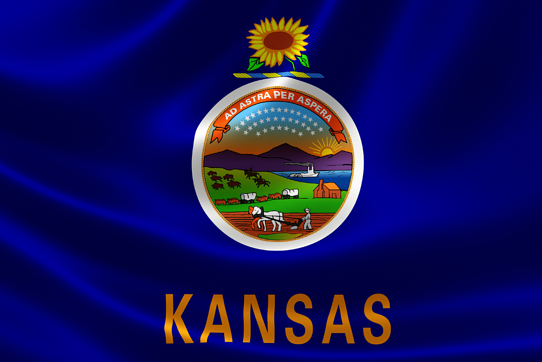 Kansas Unemployment Fraud Surge Causes Issues for Victims, Form 1099-G