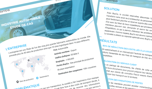 BuyCo case study automobile
