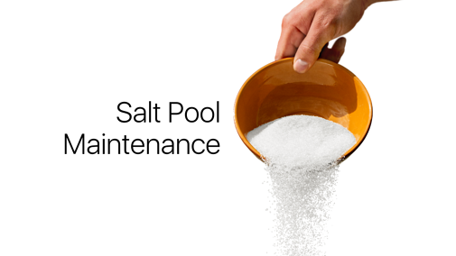 How to Avoid Common Salt Pool Maintenance Issues