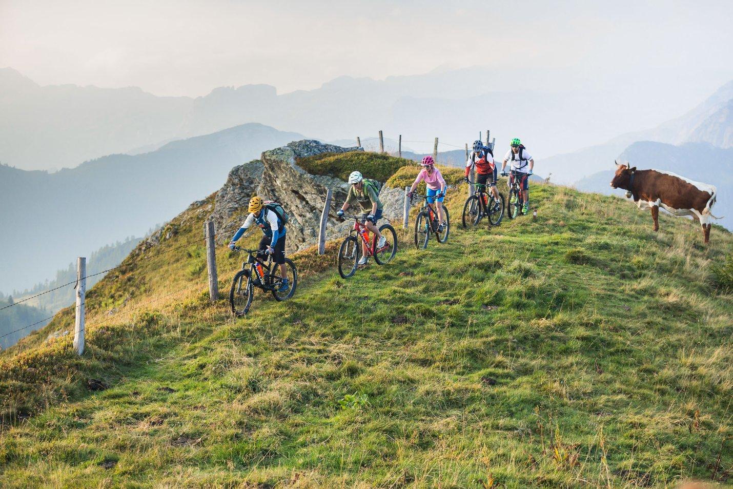 Bike tours in flachau_AN_1054