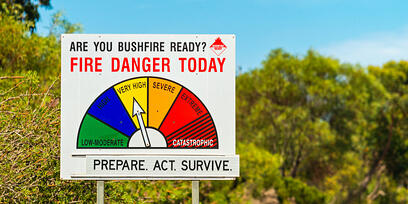 Prepare Your Pet Bushfire Plan