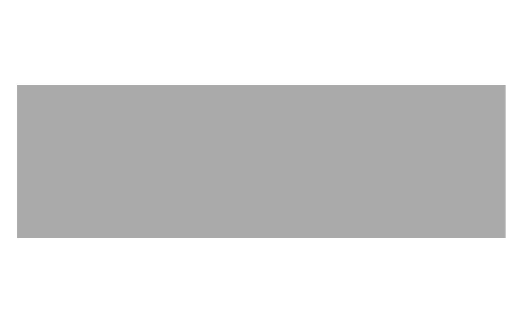 n2g logo