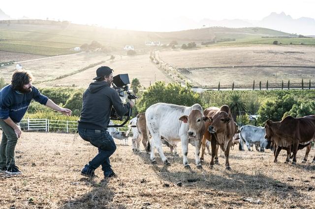 Lockdown filming across the world