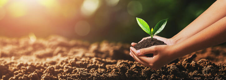 All About Lightweight Soils