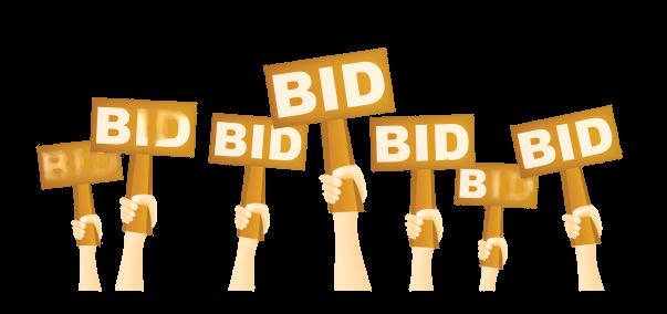 rdof-auction-bid-image