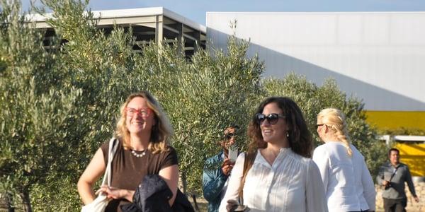 Visitantes olivar oleoturismo