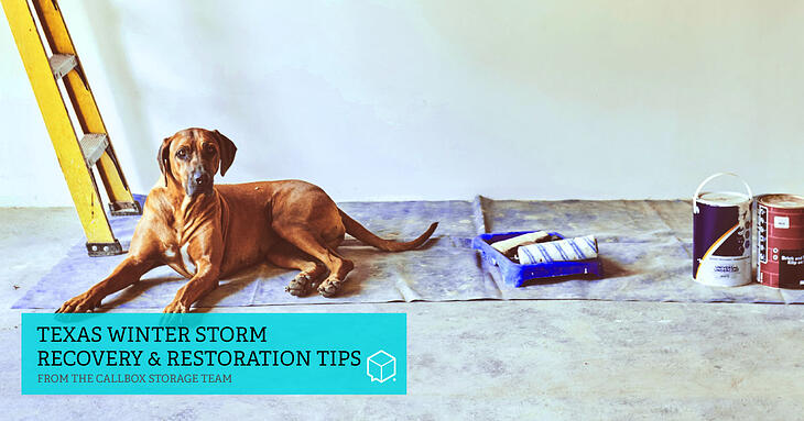 Texas Winter Storm Recovery & Restoration Tips