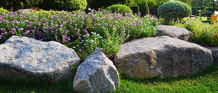 Xeriscape with Landscaping Boulders and Rocks